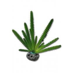 Cactus Decoración para Acuarios