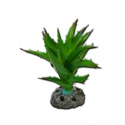 Cactus ALOE Decoración para Acuarios
